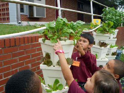 Hydroponic Gardening, School Gardens, You Pick Farm